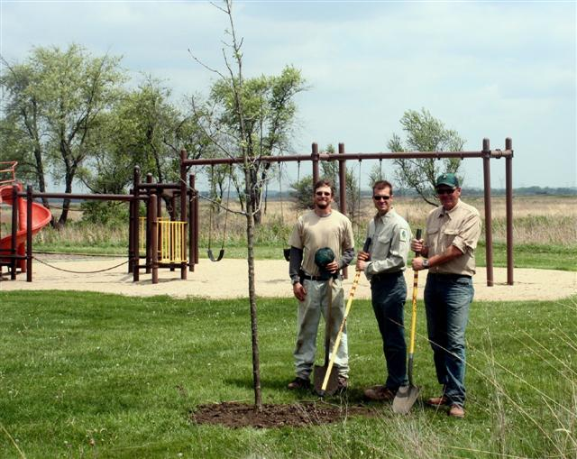 Burr Oak Trees added to Prairie Grove Picnic Area